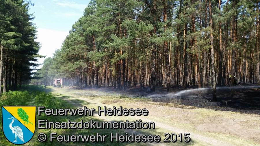 Einsatz 98/2015 2500m² Waldbodenbrand Hermsdorf 06.06.2015