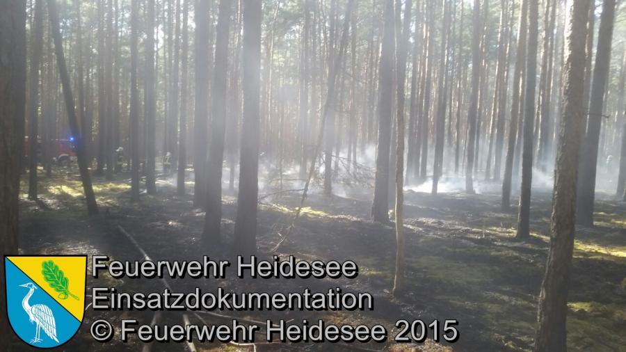 Einsatz 103/2015 5000m² Waldbodenbrand Hermsdorf Mühle 15.06.2015