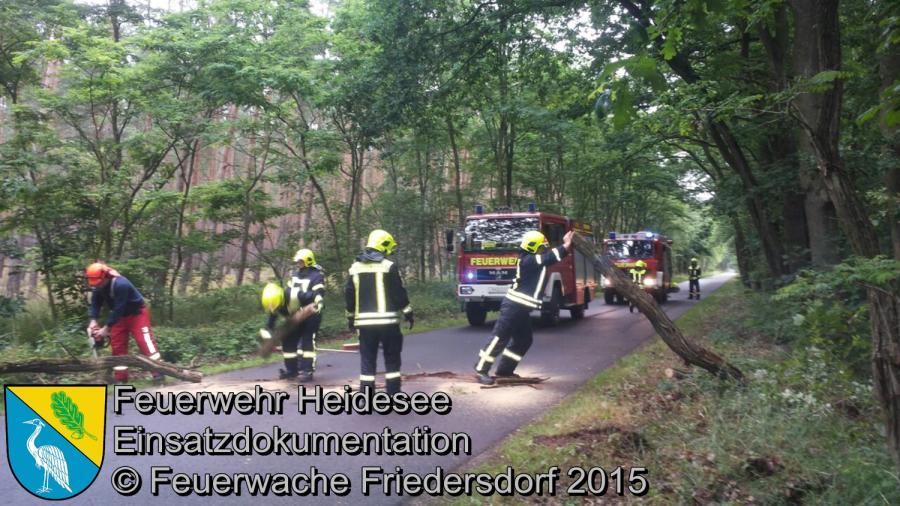 Einsatz 106/2015 Baum auf Straße OV Blossin - Dolgenbrodt 28.06.2015