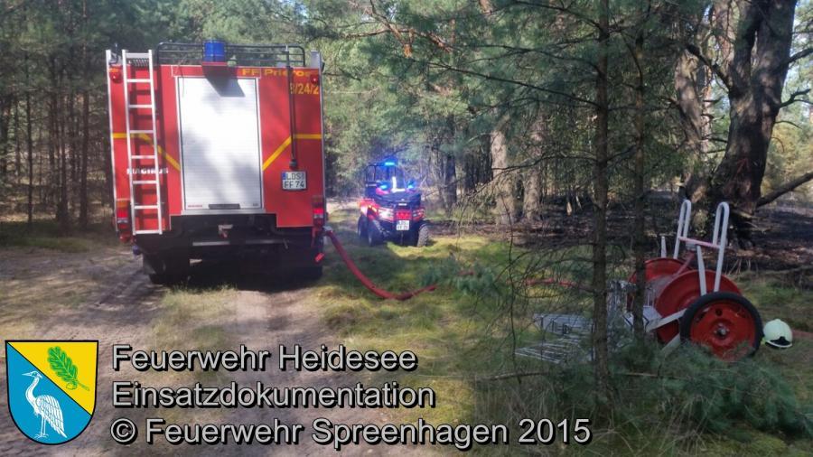 Einsatz 129/2015 2,5 Hektar Waldbodenbrand Hartmannsdorf (LOS) 06.08.2015
