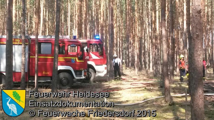 Einsatz 132/2015 250m² Waldbodenbrand Wenzlow F2 08.08.2015