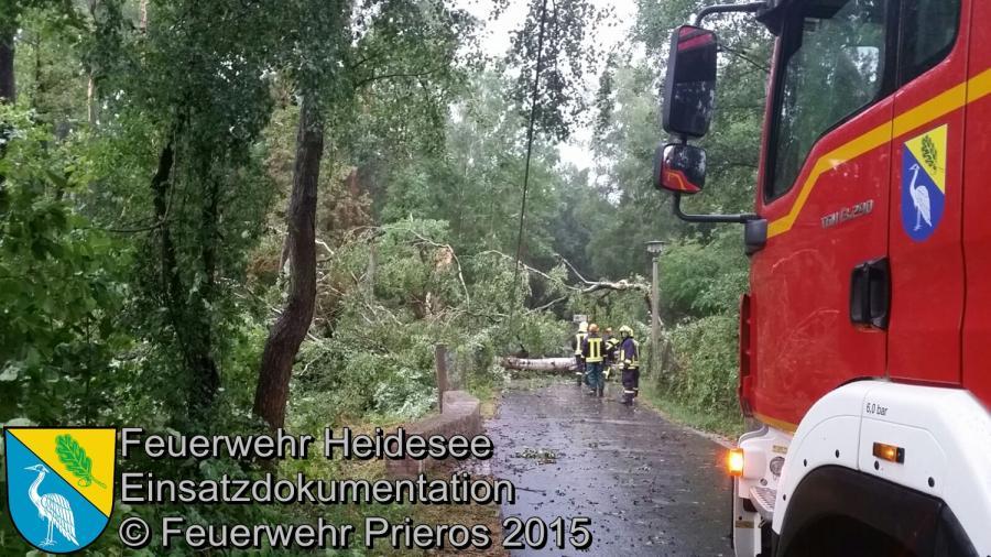 Einsatz 136/2015 Baum über Straße KIEZ Hölzerner See 16.08.2015