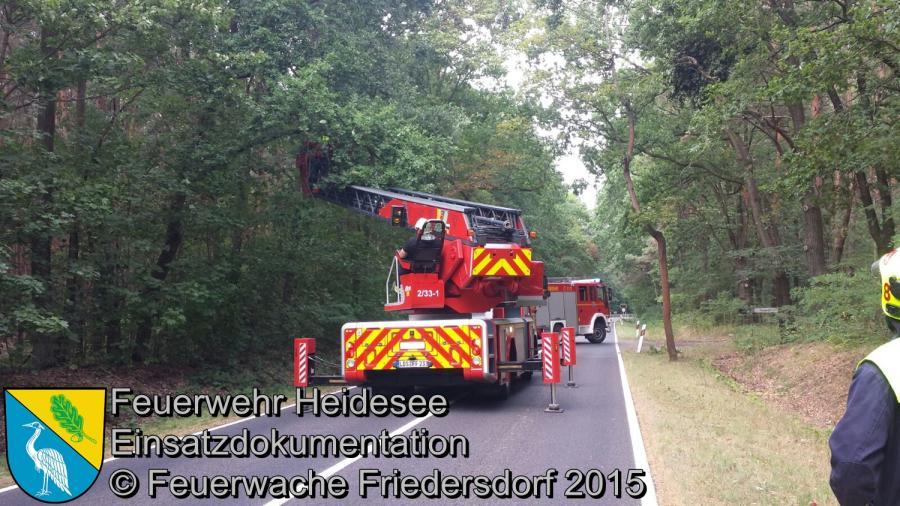 Einsatz 143/2015 Ast droht zu stürzen B179 17.08.2015