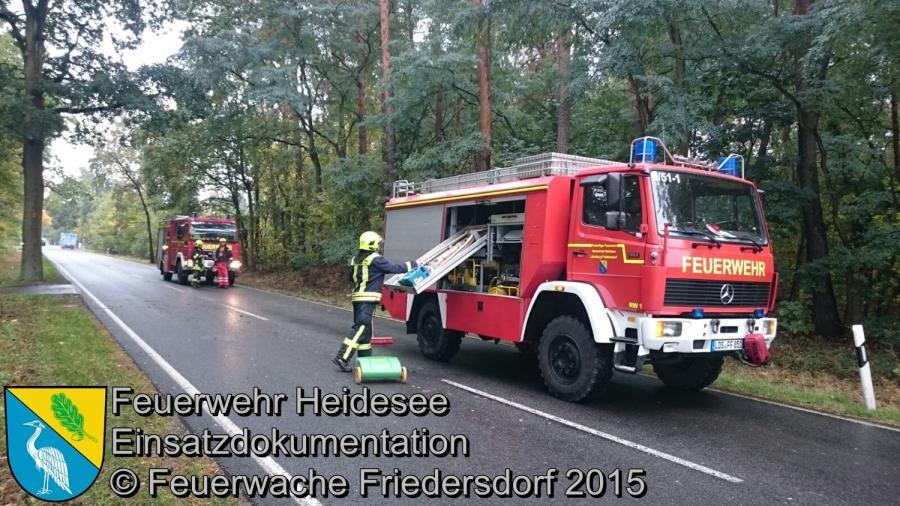 Einsatz 156/2015 Baum auf Straße L39 OV Friedersdorf - Wenzlow 08.10.2015