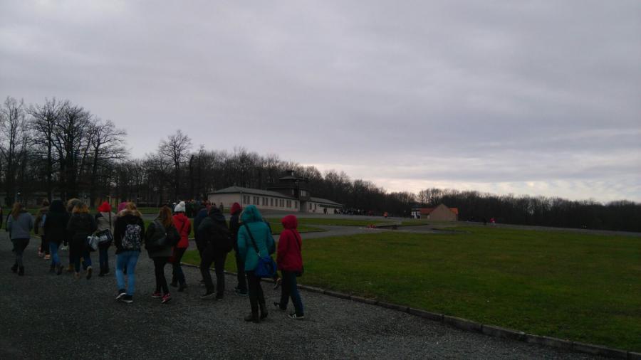 Buchenwald2015