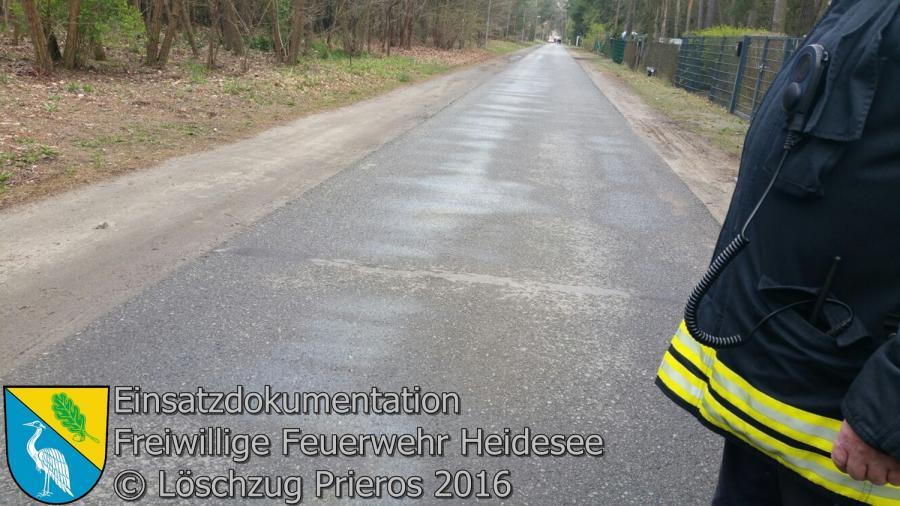 Einsatz 19/2016 | 300m lange Ölspur | Prieros Cottbuser Straße 10.04.2016