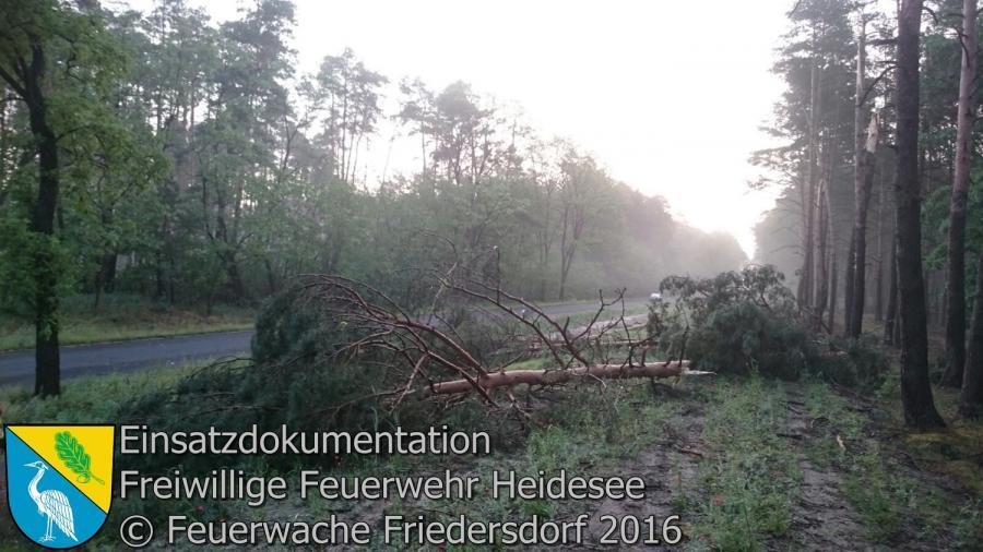 Einsatz 41/2016 | mehrere Bäume auf Radweg | L40 OV Friedersdorf - Bindow 24.05.2016