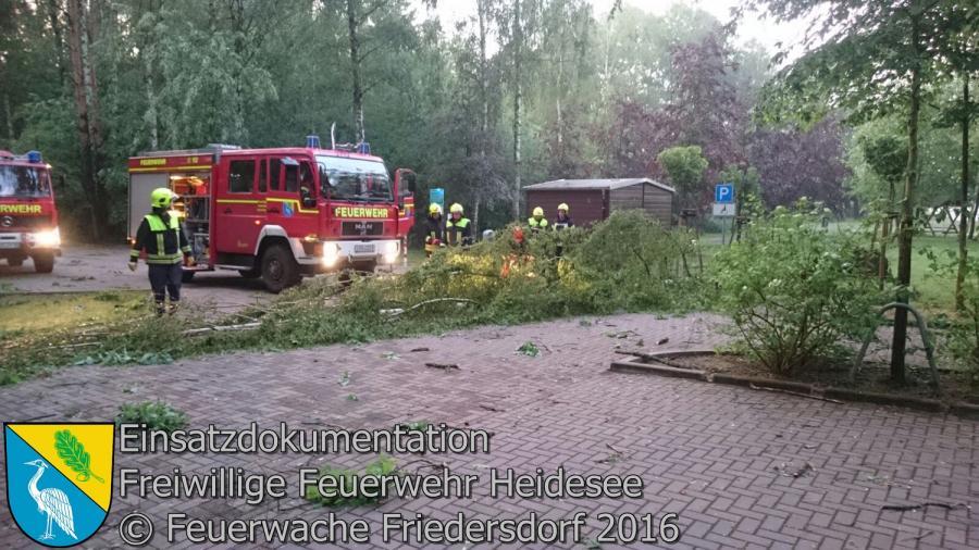 Einsatz 39/2016 | Baum auf Parkplatz | Bindow Badestrand 24.05.2016