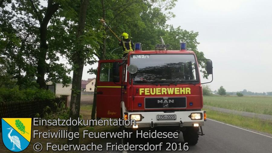 Einsatz 50/2016 | Ast droht zu stürzen | Friedersdorf Berliner Straße Siedlung24.05.2016