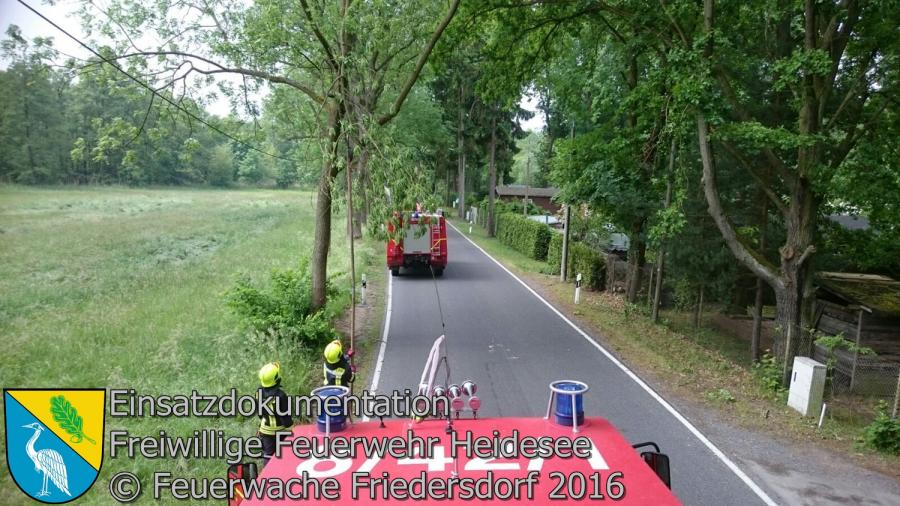 Einsatz 48/2016 | Ast droht zu stürzen | L39 OV Blossin - Kolberg 24.05.2016