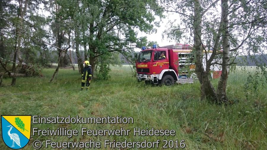 Einsatz 53/2016 | 5 Bäume auf Straße | Bindow Blossiner Stieg 24.05.2016