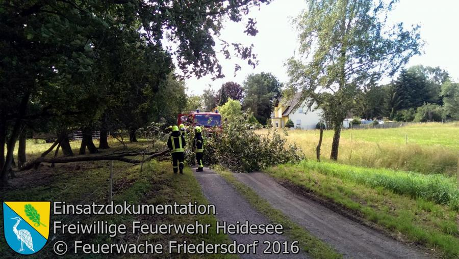 Einsatz 69/2016 | Baum über Straße | Dannenreich Friedrichhofer Weg 06.07.2016