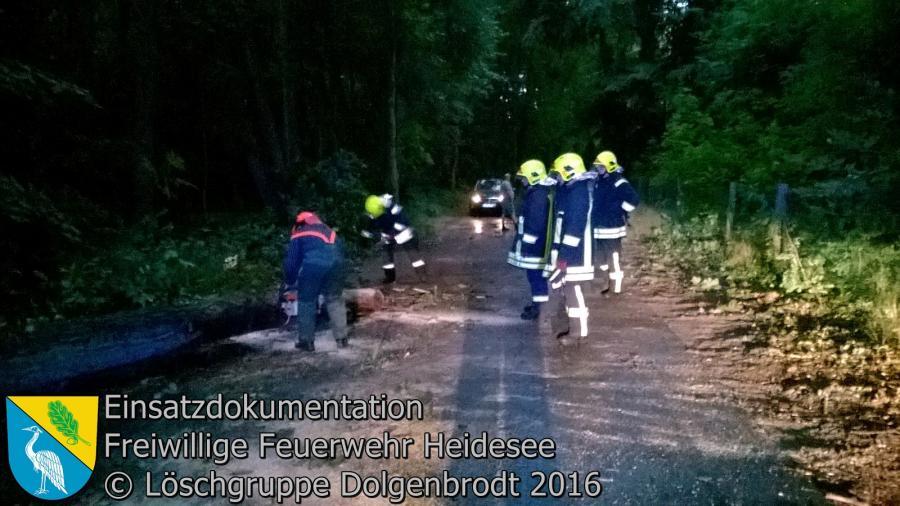 Einsatz 85/2016 | 2 Bäume auf Straße | Dolgenbrodt Parkweg 16.08.2016