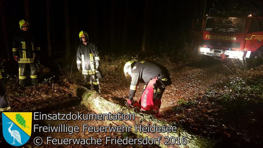 Einsatz 112/2016 | Baum über Straße | Friedersdorf Spreestraße 20.11.2016
