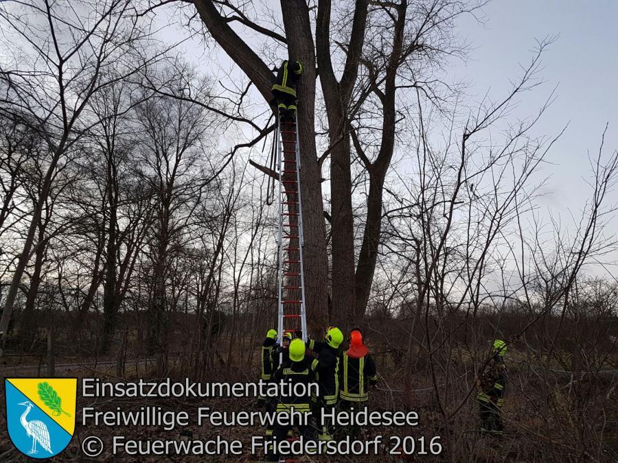 Einsatz 126/2016 | 2 Bäume drohen zu stürzen | Friedersdorf Dudel | 27.12.2016