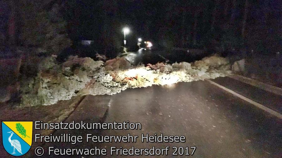 Einsatz 9/2017 | Baum über Straße | Bindow Margaretenstraße X Ernst-Thälmann-Straße 24.02.2017
