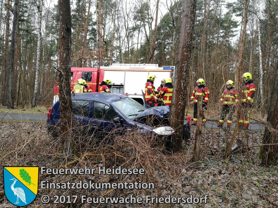 Einsatz 14/2017 | PKW gegen Baum | OV Dolgenbrodt - Blossin | 18.03.2017