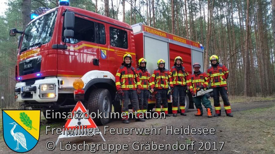 Einsatz 17/2017 | Baum in Telefonleitung | Gräbendorf Körbiskruger Straße | 18.03.2017