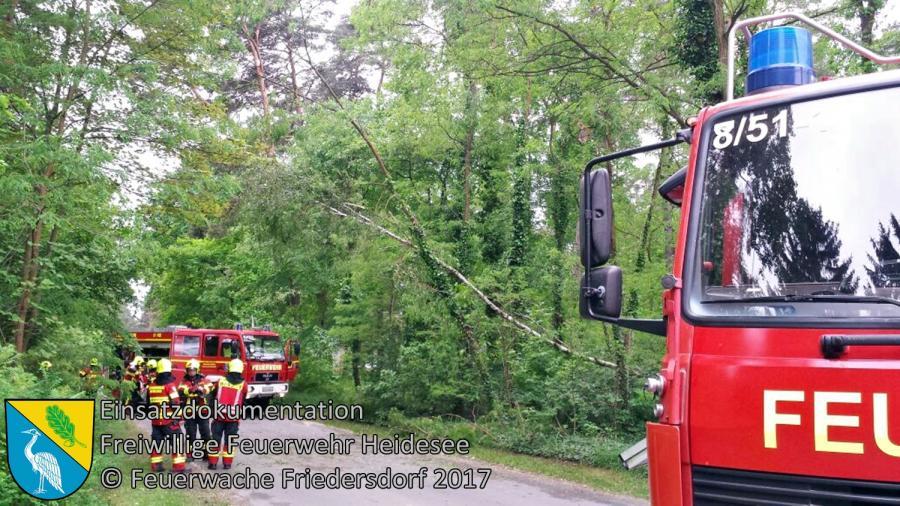 Einsatz 42/2017 | Baum droht zu stürzen | Bindow Mariannenstraße | 24.05.2017