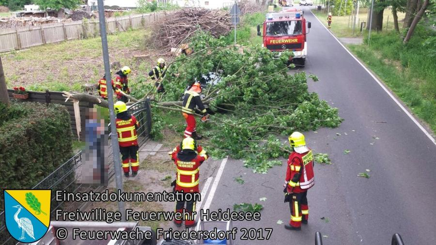 Einsatz 47/2017 | großer Ast auf PKW und Straße | Bindow Bindower Hauptstraße | 30.05.2017
