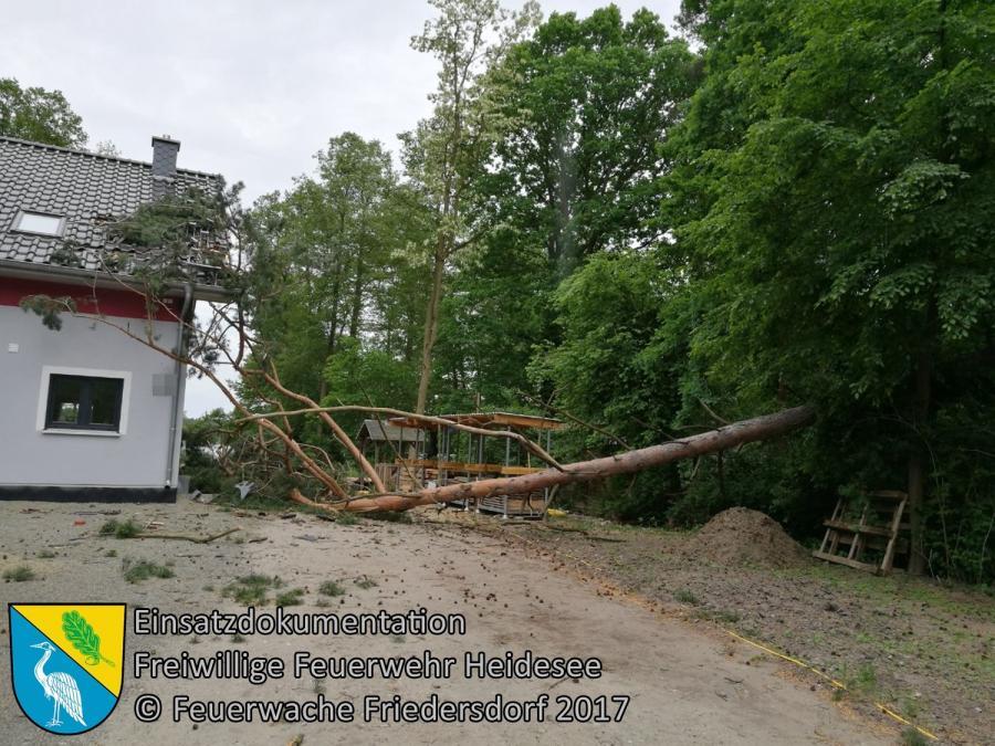 Einsatz 49/2017 | Baum auf Haus | Bindow Mariannenstraße | 30.05.2017
