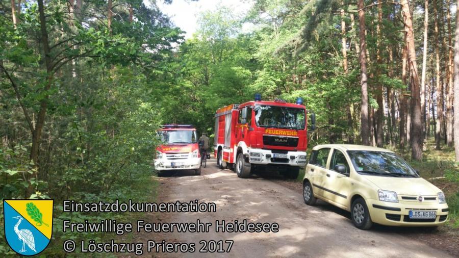 Einsatz 55/2017 | Absicherung Munitionssprengung | Streganz Am Eichberg | 07.06.2017