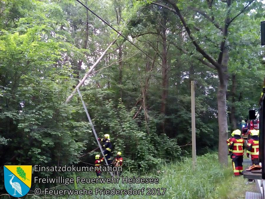Einsatz 58/2017 | Baum droht zu stürzen | L 39 OV Blossin - Kolberg | 11.06.2017
