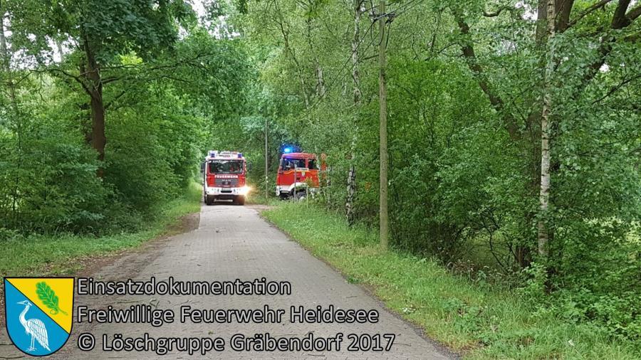 Einsatz 66/2017 | großer Ast droht zu stürzen | Gräbendorf Wusterhausener Straße | 22.06.2017