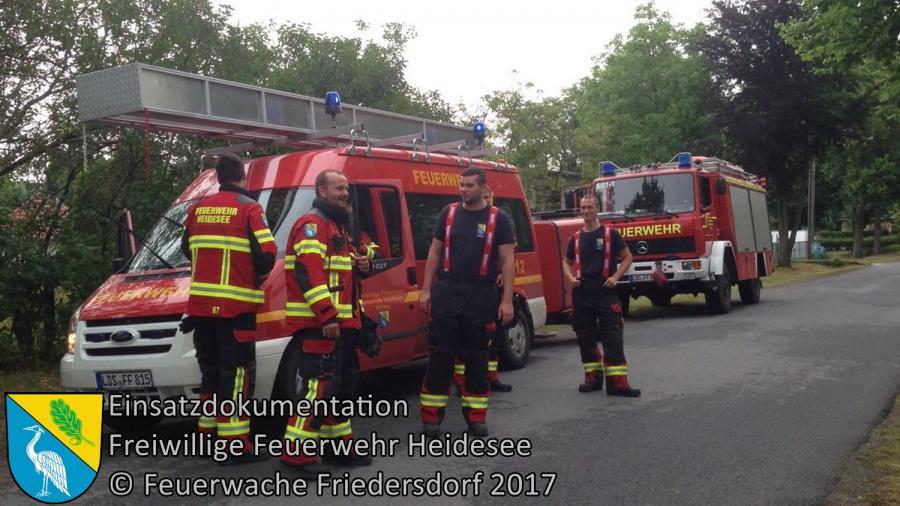 Einsatz 69/2017 | Ast droht zu stürzen | Wolzig Blossiner Weg | 22.06.2017