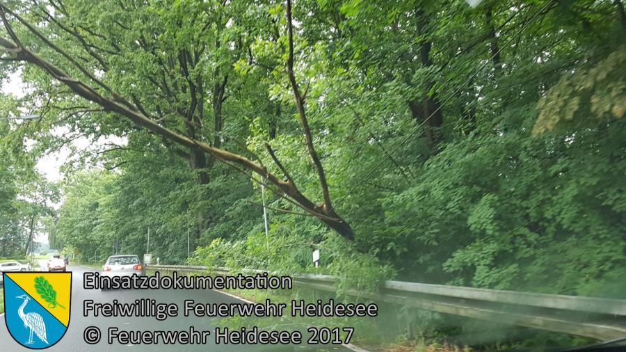 Einsatz 81/2017 | Baum droht zu stürzen | OV Bindow - Gussow | 29.06.2017