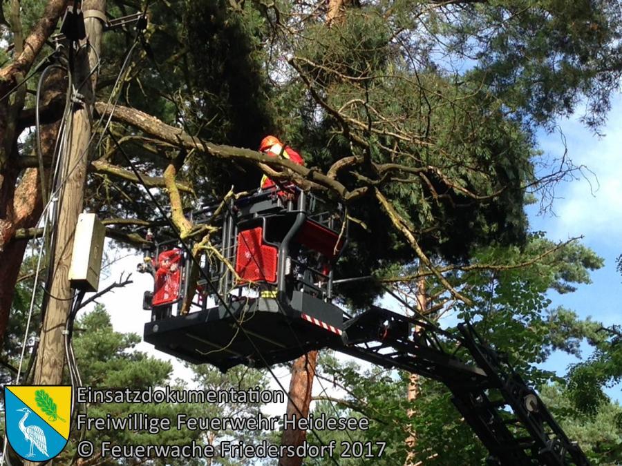 Einsatz 89/2017 | Baumkrone droht zu stürzen | Prieros Langen See | 30.06.2017