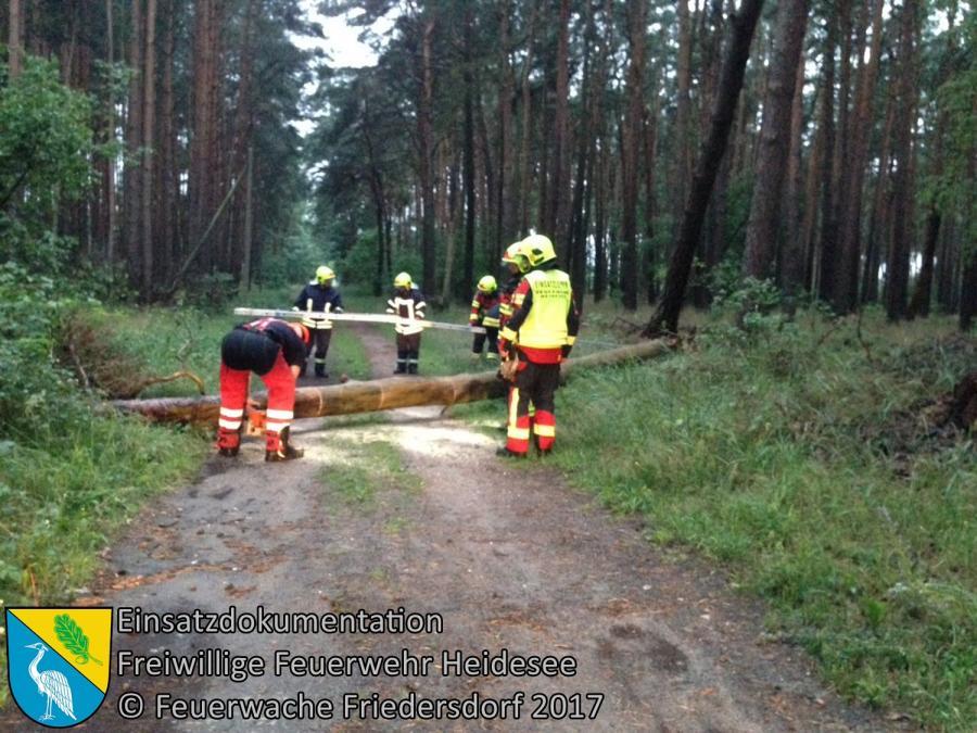 Einsatz 93/2017 | Baum auf Straße | Friedersdorf Wilhelmstraße | 01.07.2017