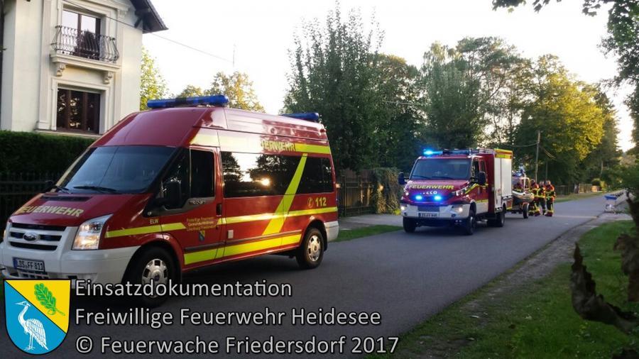 Einsatz 113/2017 | Person in Wasser | Wolzig Blossiner Weg | 23.08.2017