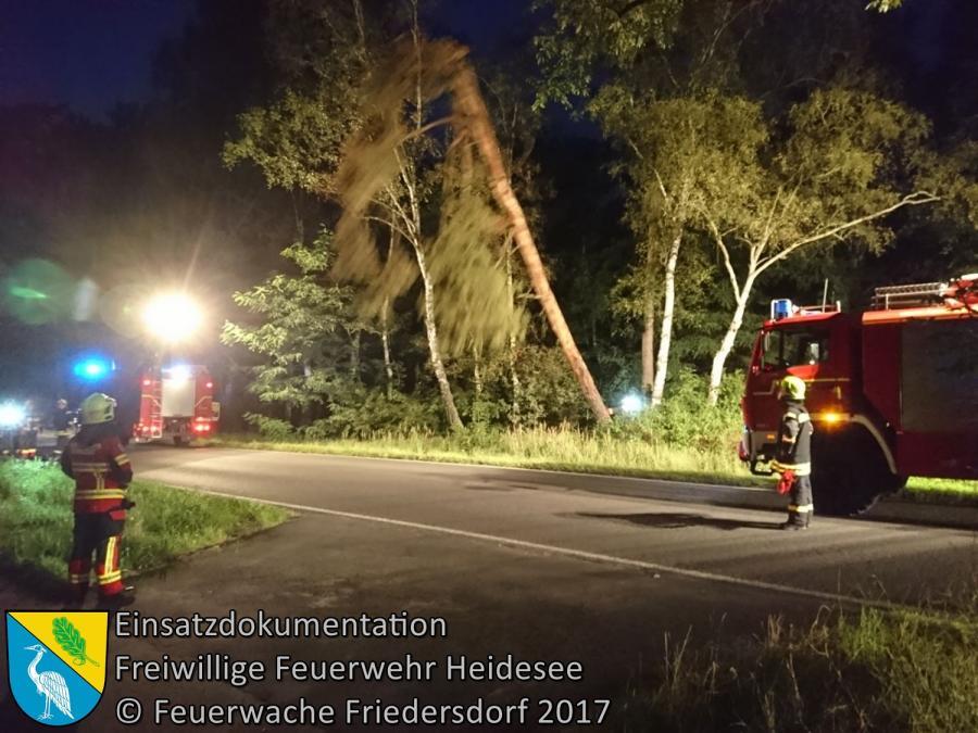 Einsatz 118/2017 | Baumkrone droht zu stürzen | L40 OV Friedersdorf - Bindow | 05.09.2017