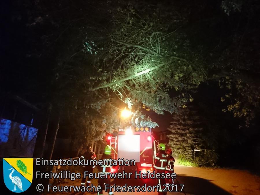 Einsatz 243/2017 | Baumkrone droht zu stürzen | Gussow Senziger Straße | 05.10.2017