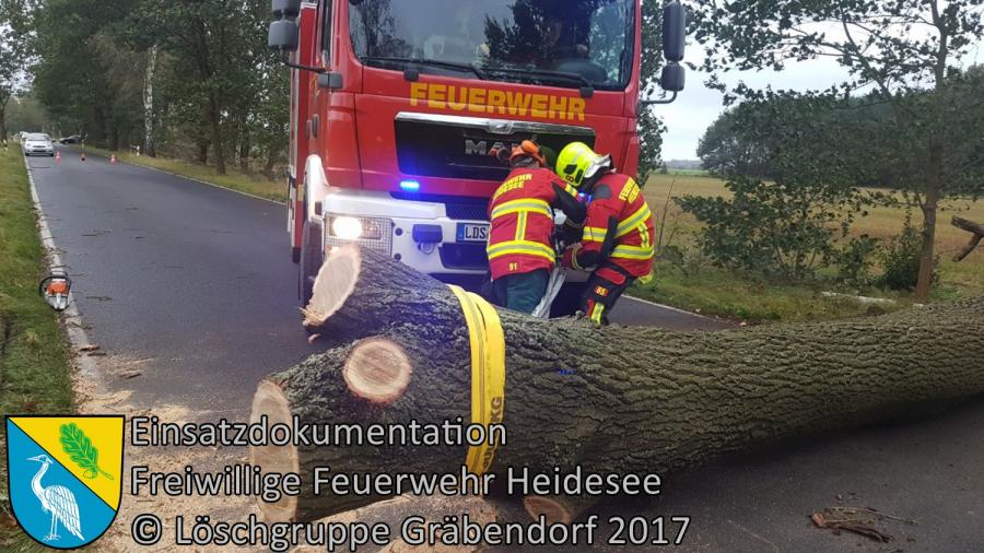 Einsatz 129/2017 | Baum über Straße | K6152 OV Gussow - Bindow | 05.10.2017