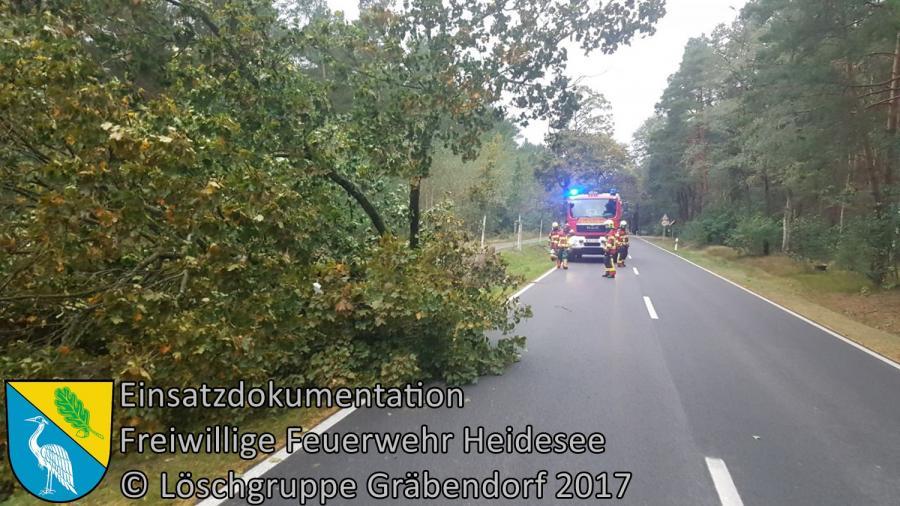 Einsatz 170/2017 | Baum über auf Straße | B246 OV Gräbendorf - Prieros | 05.10.2017