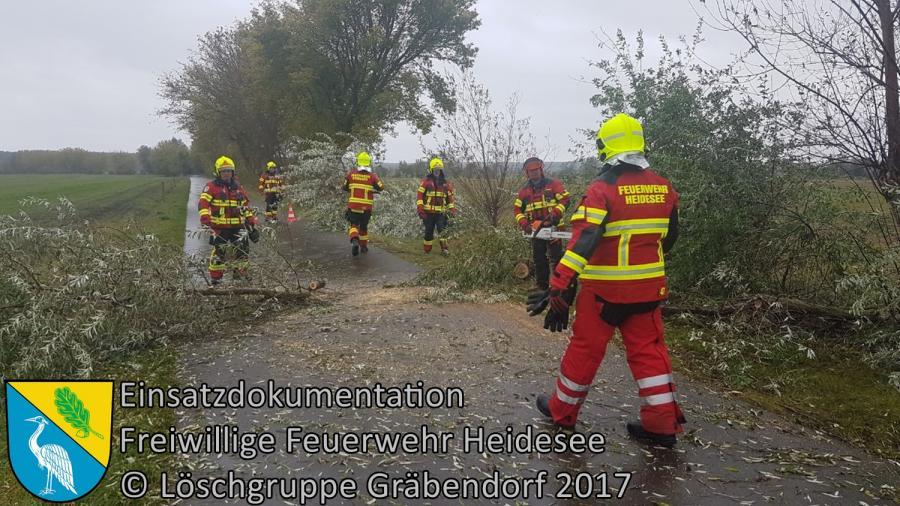 Einsatz 267/2017 | Baum über Straße | Gräbendorf Dubrower Straße | 06.10.2017
