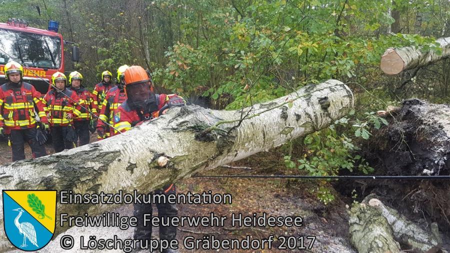 Einsatz 268/2017 | Baum über Straße | Gräbendorf Wiesenblick | 06.10.2017