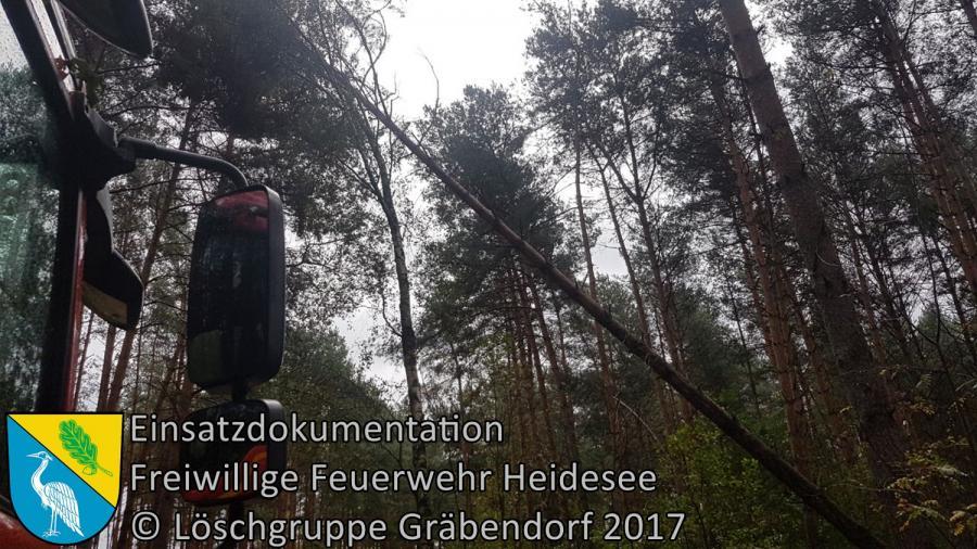Einsatz 293/2017 | Baum droht in Telefonleitung zu stürzen | Gräbendorf Körbiskruger Straße | 06.10.2017