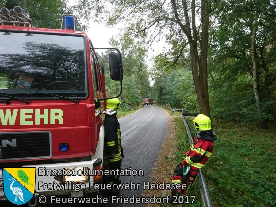 Einsatz 298/2017 | Baumkrone droht zu stürzen | L39 OV Friedersdorf - Blossin | 07.10.2017