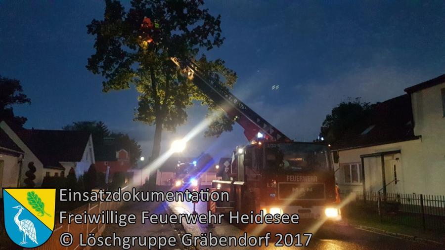 Einsatz 288/2017 | Ast droht zu stürzen | Gräbendorf Kalr-Woitschach-Straße | 06.10.2017