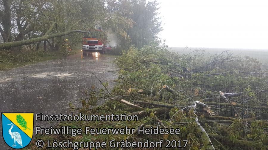 Einsatz 283/2017 | Baum über Straße | Gräbendorf Dubrower Straße | 06.10.2017