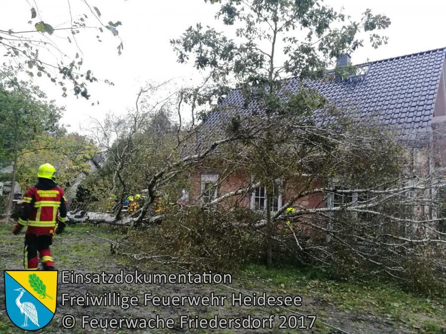 Einsatz 300/2017 | Baum droht auf Haus zu stürzen | Bindow Lehnschulzenweg | 07.10.2017