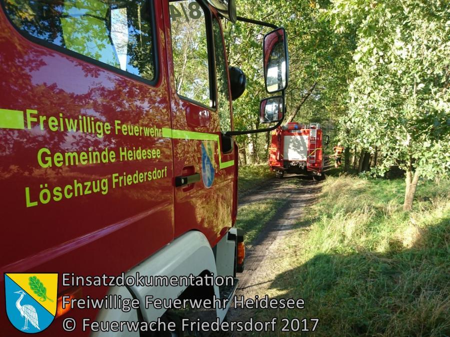 Einsatz 306/2017 | 2 Bäume über Straße | Wolzig Spreenhagener Straße | 08.10.2017