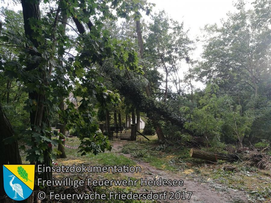 Einsatz 305/2017 | Baum droht zu stürzen | Wolzig Alter Postweg | 08.10.2017