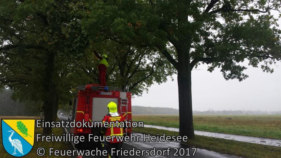 Einsatz 309/2017 | Ast droht zu stürzen | L40 OV Friedersdorf - Wolzig | 10.10.2017