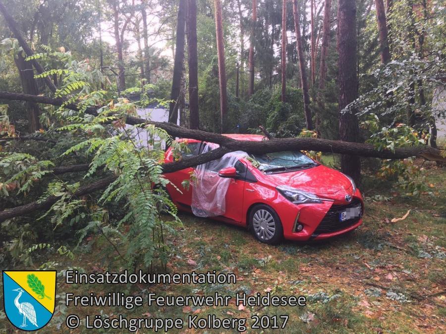 Einsatz 303/2017 | Baum auf PKW | Prieros Uferweg | 08.10.2017