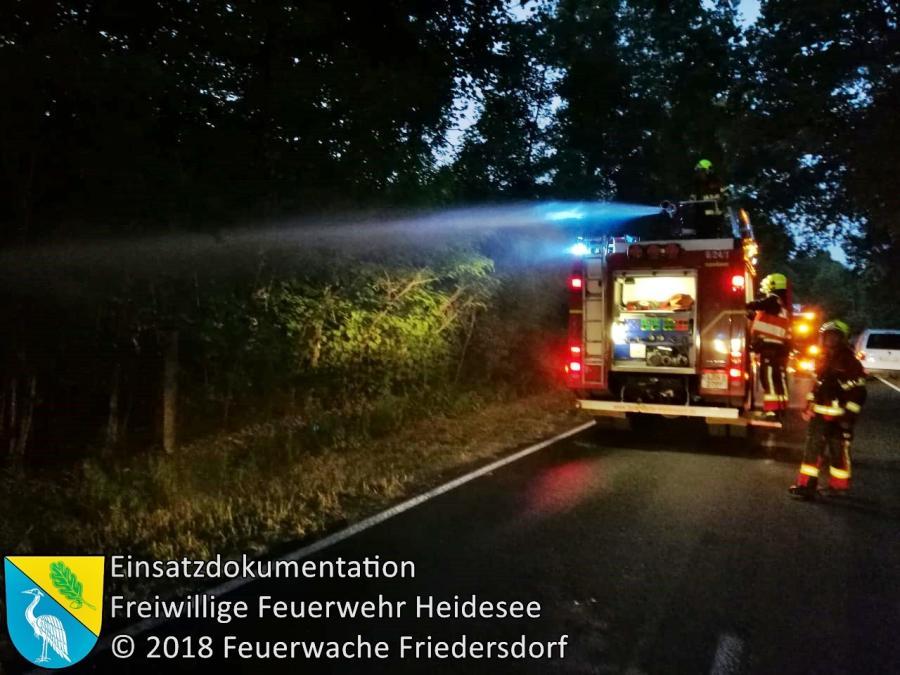 Einsatz 56/2018 | 20m² Ödlandbrand | Wolzig Wolziger Hauptstraße | 29.05.2018