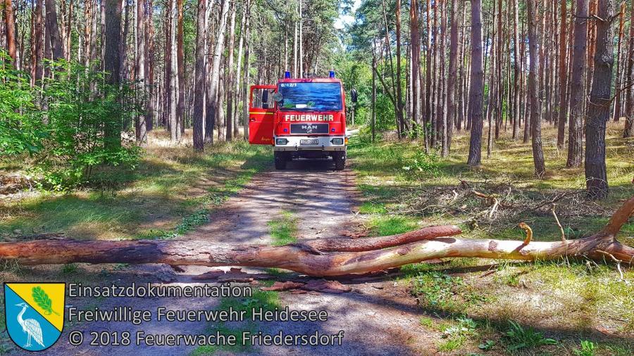 Einsatz 89/2017 | Baum auf Straße | Friedersdorf Weg zur Kläranlage | 14.07.2018